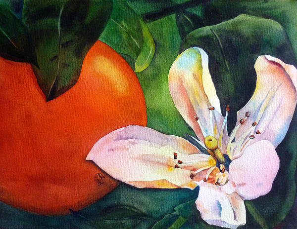 Painting - Orange Blossom by Michal Madison