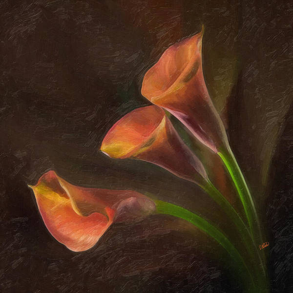 Painting - Orange Cala Lilies by Dean Wittle