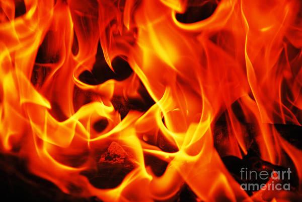 Flammable Wall Art - Photograph - Orange Flames Burning by Luis Alvarenga