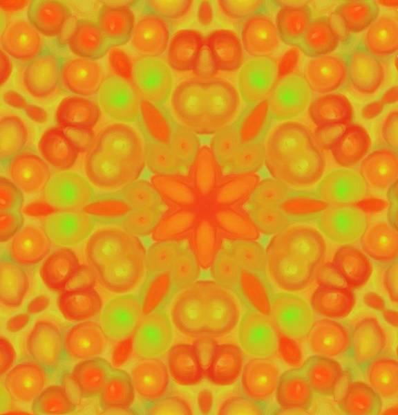 Digital Art - Orange Flower Mandela by Karen Buford