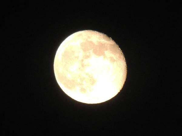 Photograph - Orange Full Moon by Kimberly Perry