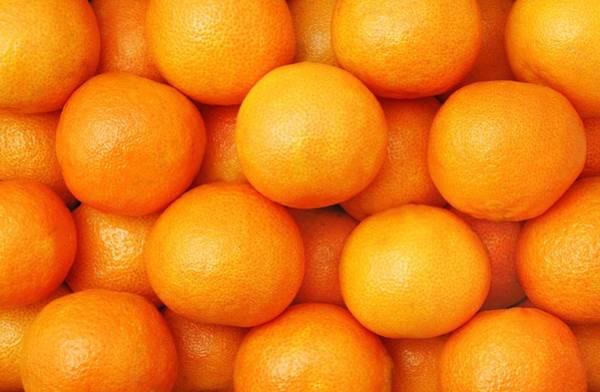 Mandarin Wall Art - Photograph - Orange Geometry by Jim Hughes