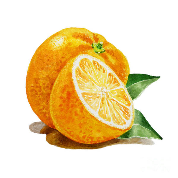 Yummy Painting - Artz Vitamins An Orange by Irina Sztukowski