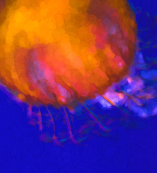 Mixed Media - Orange Jellyfish Ocean Art   by Priya Ghose