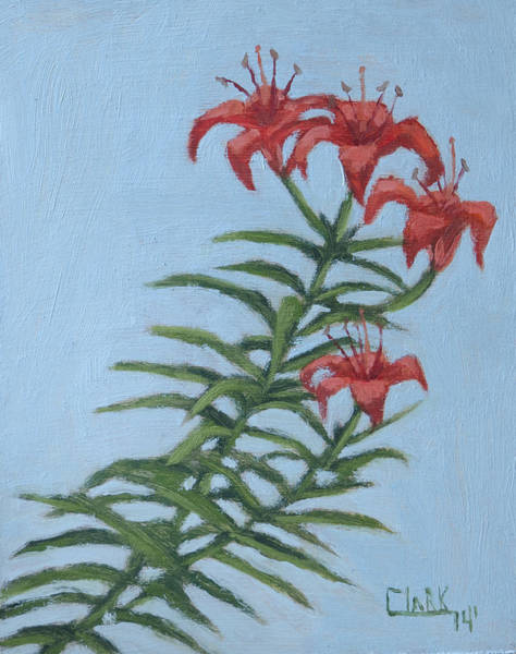Drawing - Orange Lilies by Wade Clark