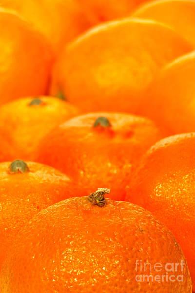 Photograph - Orange Oranges by Olivier Le Queinec