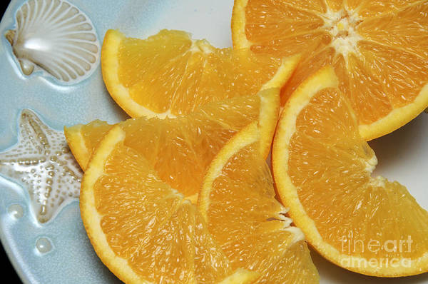 Photograph - Orange Slices 2 by Andee Design