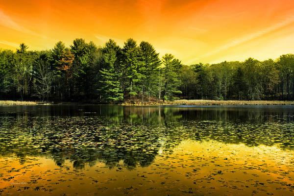 Photograph - Orange Sunrise Reflection Landscape by Christina Rollo