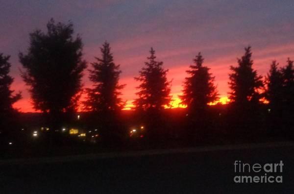 Photograph - Orange Sunset by Christina Verdgeline