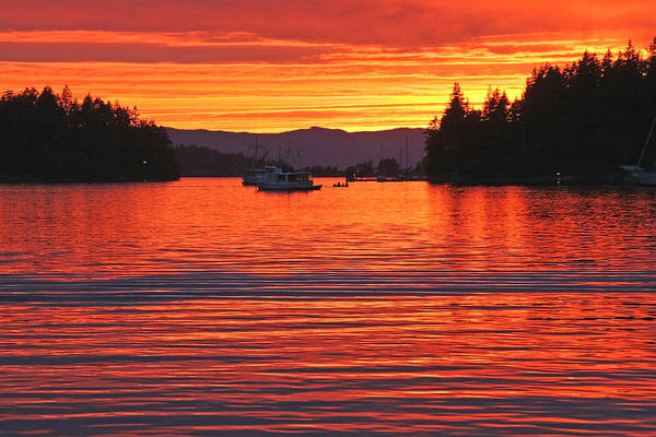 Photograph - Orange Sunset Over The Bay by Peggy Collins