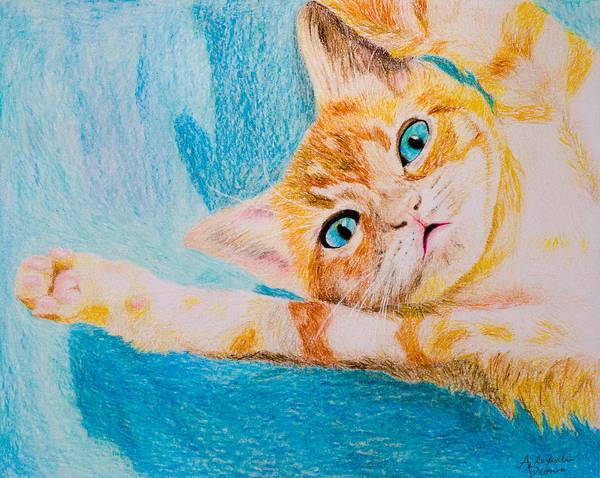 Orange Tabby Drawing - Orange Tabby by Alexandra Brown