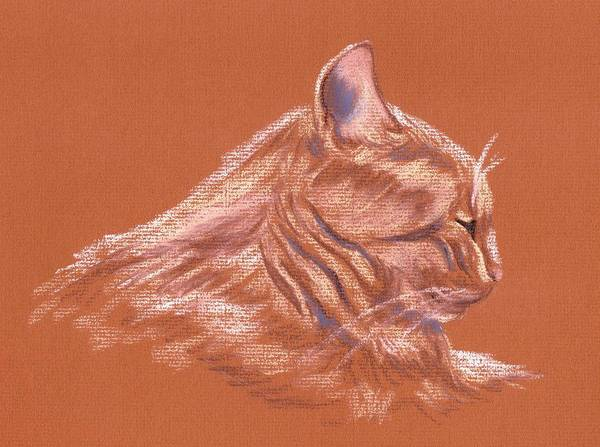 Pastel - Orange Tabby Cat In Profile by MM Anderson