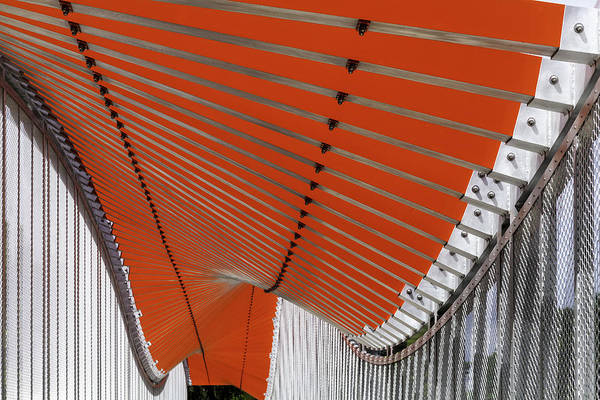 Photograph - Orange Undulations by Lynn Palmer