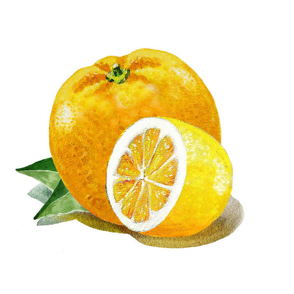 Wall Art - Painting - Orange With Half Lemon by Irina Sztukowski
