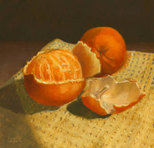 Drawing - Oranges Still Life by Dominic White