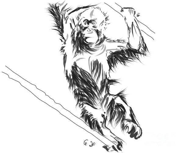 Painting - Orangutan 3 by Go Van Kampen