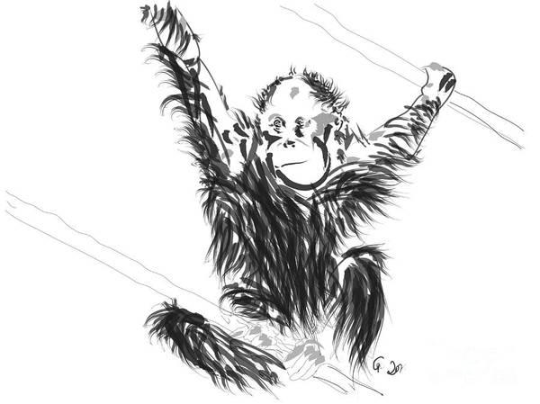 Painting - Orangutan Baby by Go Van Kampen