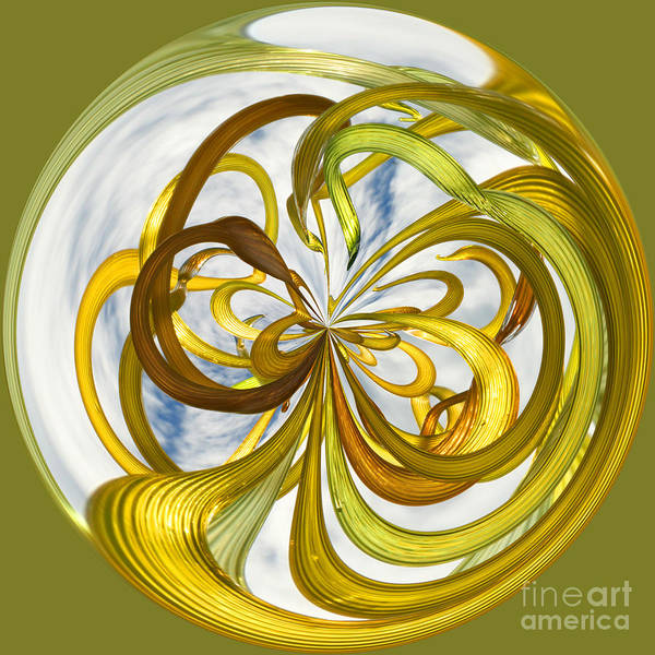 Photograph - Orb 3 by Crystal Nederman