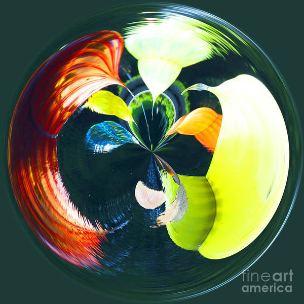 Photograph - Orb 6 by Crystal Nederman