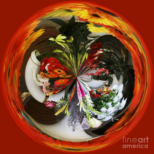 Photograph - Orb 8 by Crystal Nederman