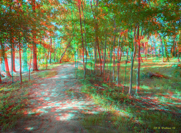 Stereoscopy Digital Art - Orchard Beach Trail - Use Red_cyan 3d Glasses by Brian Wallace