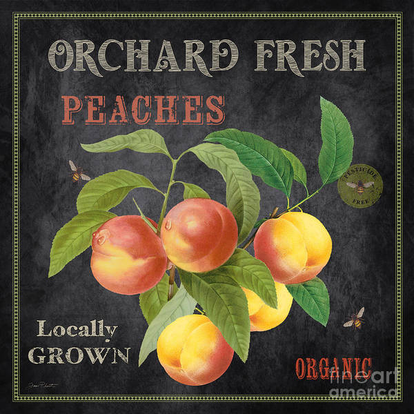 Wall Art - Painting - Orchard Fresh Peaches-jp2640 by Jean Plout