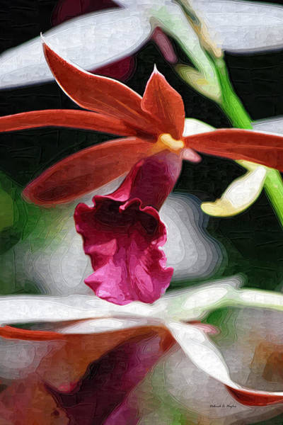 Photograph - Orchid Flow by Deborah Hughes