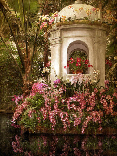 Photograph - Orchid Show by Jessica Jenney