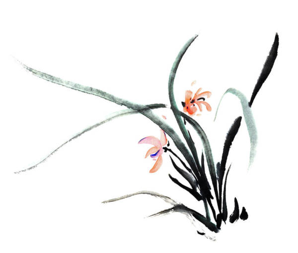 Calligraphy Digital Art - Orchid by Vii-photo