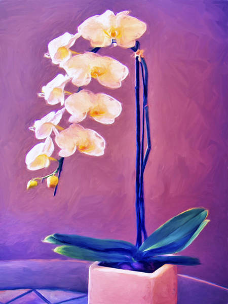 Painting - Orchids by Dominic Piperata