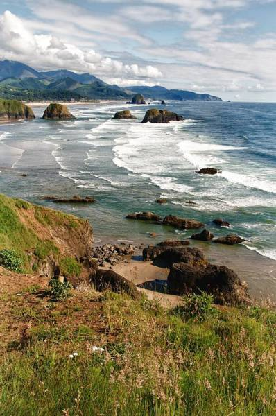 Wall Art - Photograph - Oregon Coast 1 by Terry DeHart