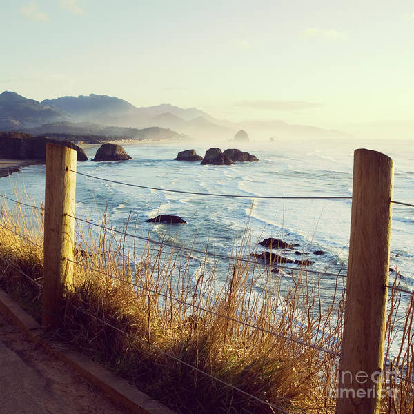 Photograph - Oregon Coast Landcape - Hipster Photo Square by Charmian Vistaunet