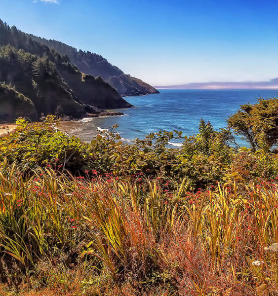 Wall Art - Photograph - Oregon Coastal Waters by Nancy Marie Ricketts