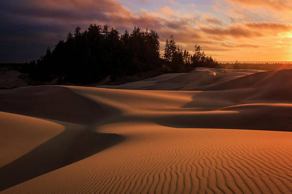 Oregon Dunes Photograph - Oregon Dunes Sunset by Kyle Ledeboer