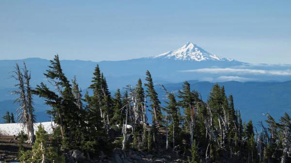 Distant Trees Wall Art - Photograph - Oregon, Mount Hood by Matt Freedman