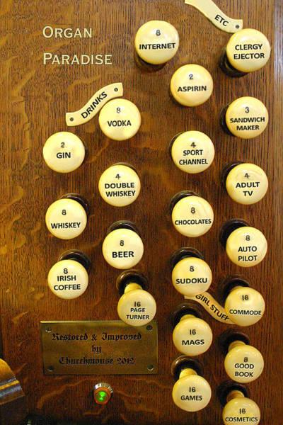 Photograph - Organ Paradise by Jenny Setchell