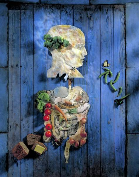 Wall Art - Photograph - Organic Food by Paul Biddle