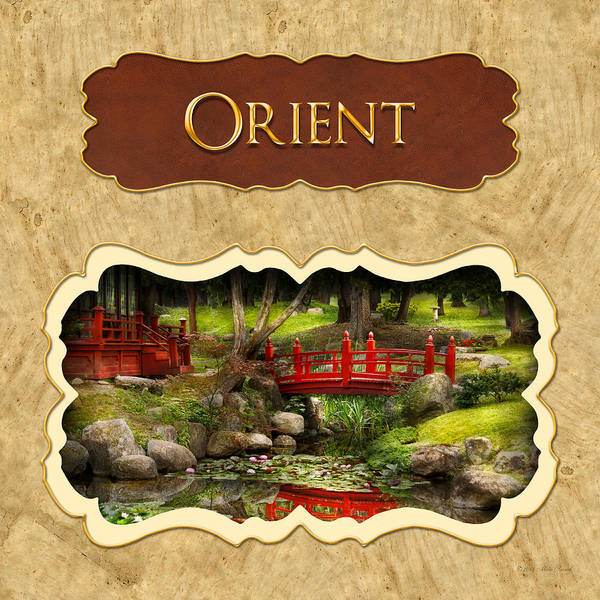 Photograph - Orient  Button by Mike Savad