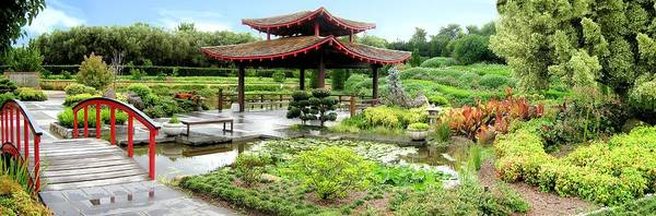 Photograph - Oriental Garden Panorama by David Rich