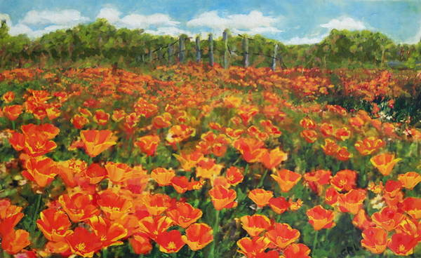 Painting - Original Fine Art Painting Orange Popies North Carolina by G Linsenmayer