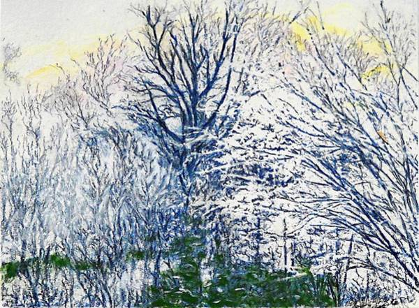 Painting - Original Painting Frederick Maryland Trees And Snow by G Linsenmayer