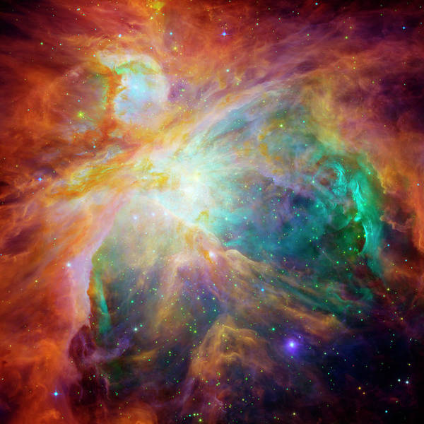 Infrared Radiation Photograph - Orion Nebula by Nasa/jpl-caltech/stsci/science Photo Library