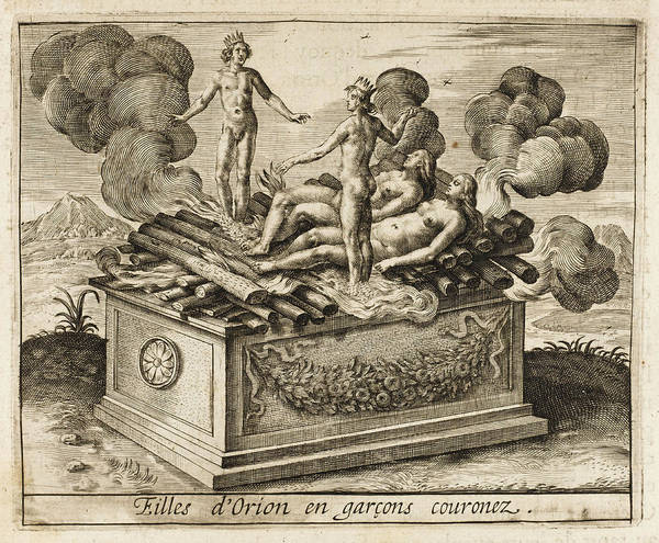 Ashes Drawing - Orion's Daughters Sacrifice  Themselves by Mary Evans Picture Library