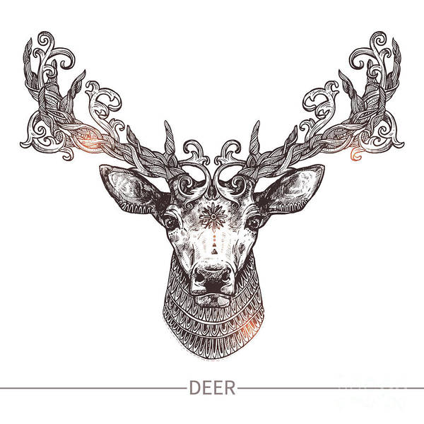 Hunt Digital Art - Ornamental Tattoo Deer Head. Highly by Alex Rockheart