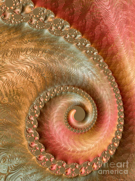 Wall Art - Digital Art - Ornate Swirl by Heidi Smith
