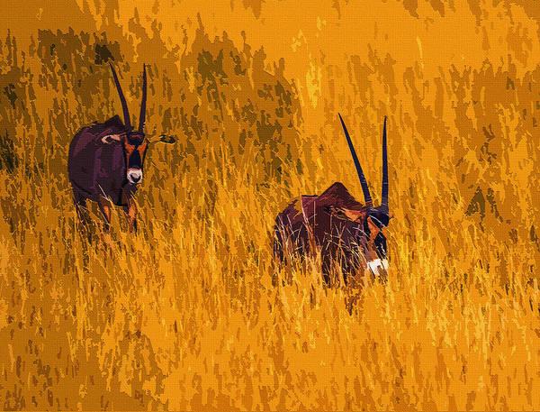 East Africa Digital Art - Oryx by Brian Stevens