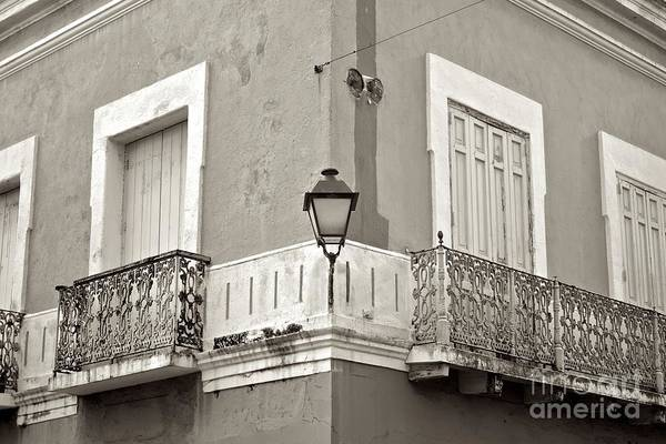 Photograph - Osj5499sp by Ricardo J Ruiz de Porras