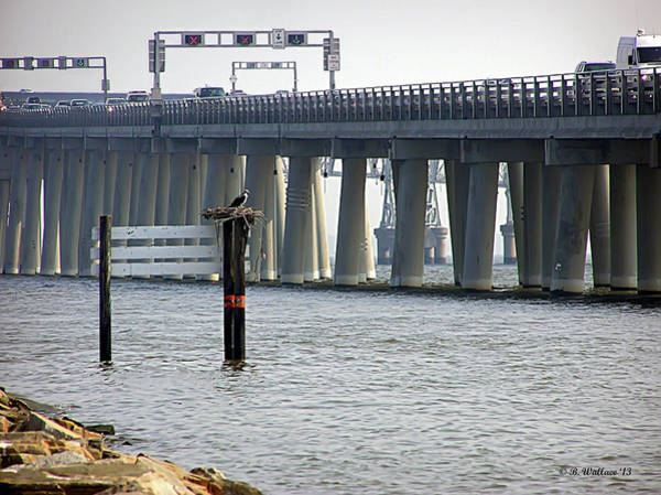 Sandy Point State Park Photograph - Osprey By The Bridge by Brian Wallace