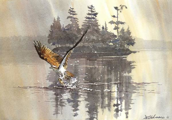 Painting - Osprey Hunting No.2 by David Gilmore
