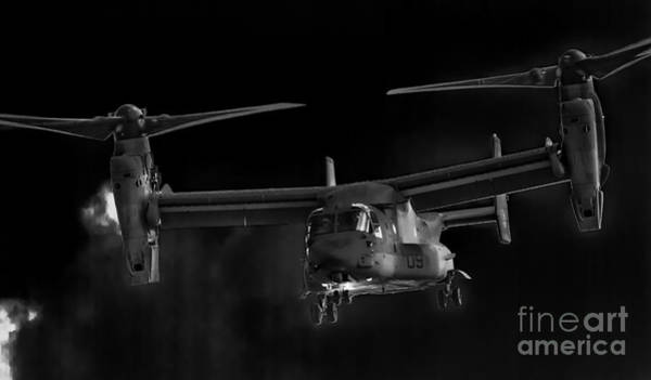 Photograph - Osprey Night Ops by Ray Shiu